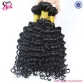Hot sale brazilian hair 100% human hair bulk extension deep curly hair