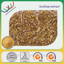 Chinese herb medicine Scutellaria extract / baical skullcap root extract / scutellaria root extract with 90% baicaline