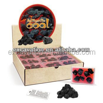 Coal Speciment in a Box Rock and Mineral Science Kit