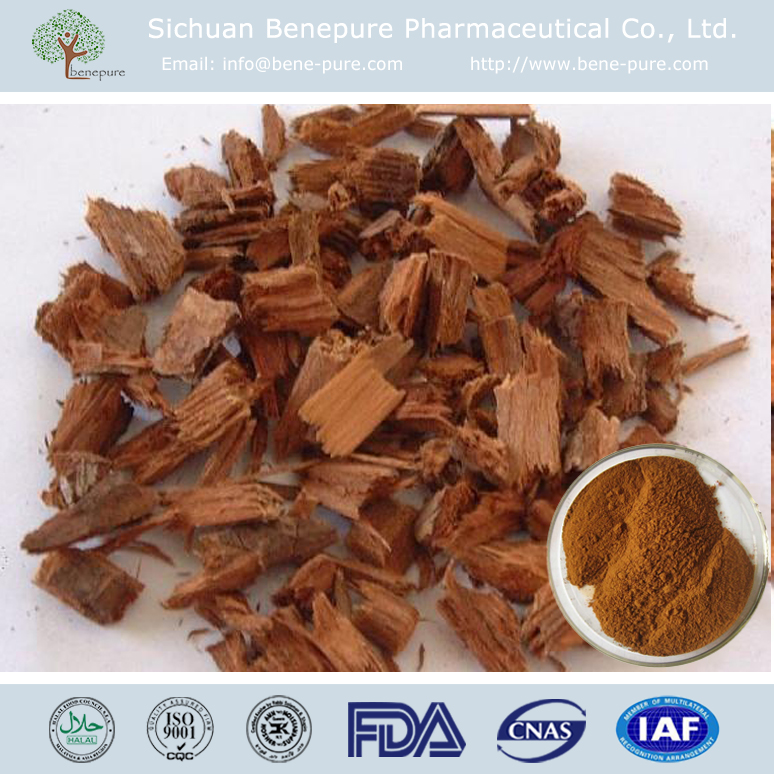 natural extract CAS:65-19-0 Pausinystalia yohimbe Yohimbine HCL 98% aphrosol hydrochloride extract
