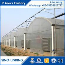 SINOLINK low operating cost Polycarbonate sheet cheap greenhouse plastic for tomatoes