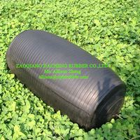China Test Inflatable pipe plug (with high pressure)