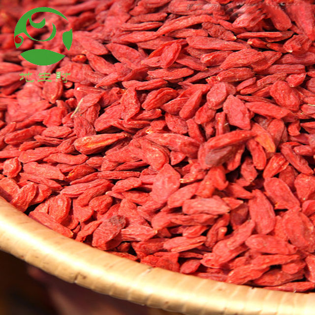 Organic goji berries dry fruit wholesaler export Turkey