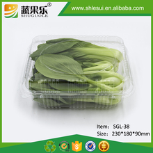 Transparent disposable plastic herb vgetable packing punnets
