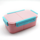 Food Safe Airtight Leakproof Bento Lunch box with inner 2 sealed compartments