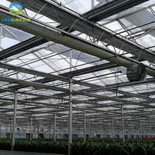 Hot galvanized steel frame poly high tunnel Tinted Float Glass Greenhouse