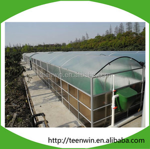 Teenwin small scale biogas plant for small farm