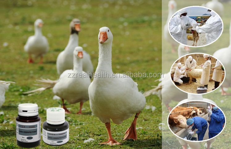 antiseptic livestock disinfection poultry topical disinfectant