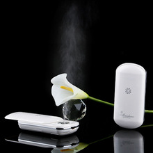 Fashionable luxury hot and cool facial steamer