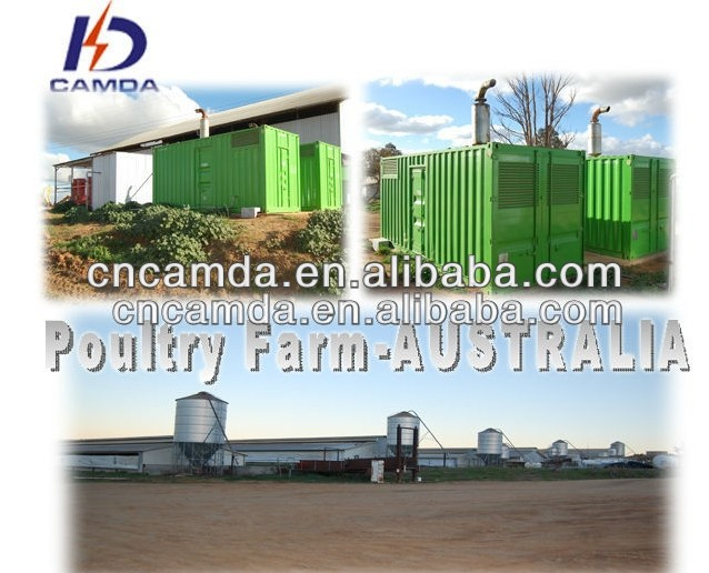 Turnkey Poultry Waste Treatment 250KW Biogas Cogeneration Power Plant CE/ISO Approved Gas Generator Manufacturer
