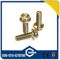 High Quality Titanium Bolt Motorcycle