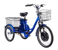 China wholesale cheap adult three wheeler cargo delivery electric tricycle for elderly