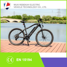2016 New Brushless Motor and < 25km Per Hour Max Speed electric bicycle / ebike / bike