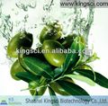 Chinese GMP Manufacturer Organic Olive Leaf Extract KS-061