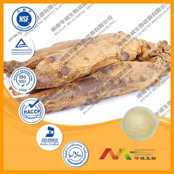 Gold Supplier for Korean Red Ginseng Root Extract Powder