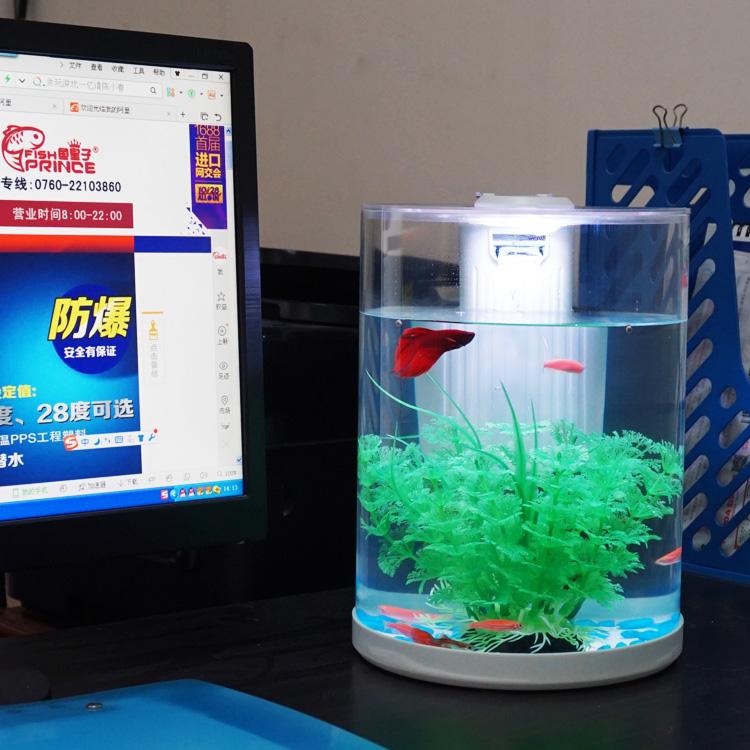 Acrylic Fish Tank Fish Farming Tank Buy Fish Tank
