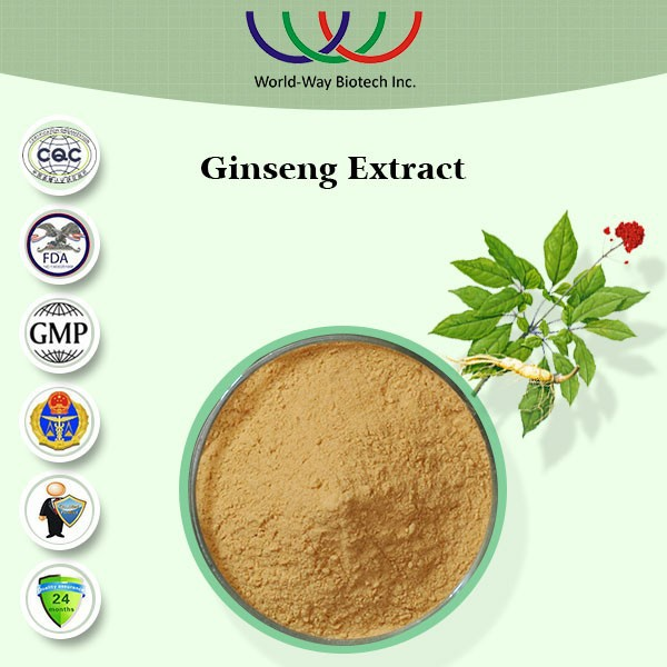 High quality halal ginseng extract powder with the better function than raw ginseng