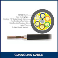 Outdoor/indoor 48 strands multi tube single mode fiber optic cable