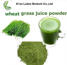 Wheat grass powder/Young Barley Grass powder /wheatgrass juice with competitive price