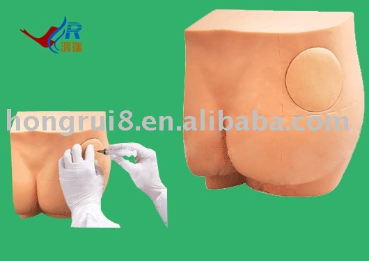 New Buttock Injection Training Model, Ideal buttocks training model