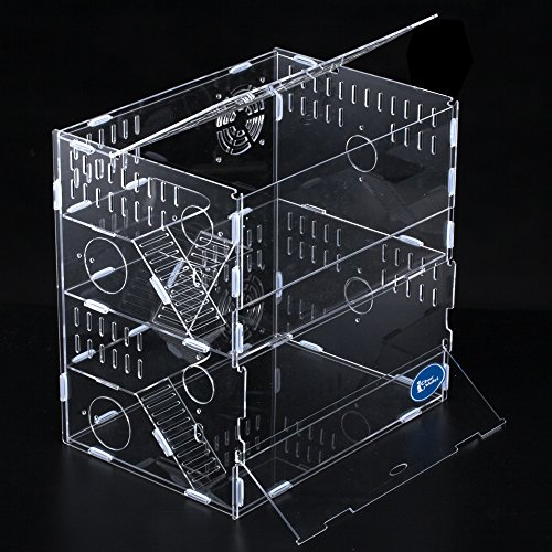 China Supplier Clear Acrylic Hamster Double Layers Pet Cage