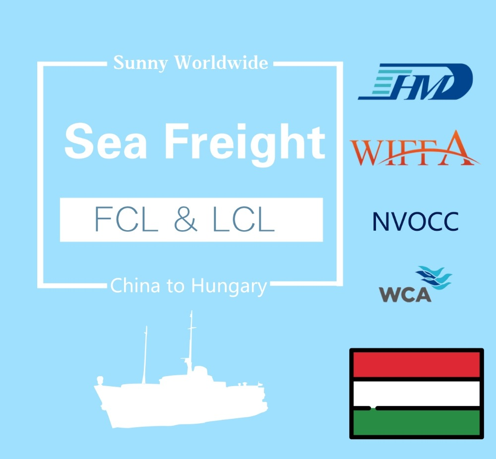 China forwarder shipping service sea cargo to Hungary