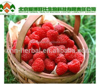 herbal medicine for big penis Mighty Raspberry ketone raspberry extract