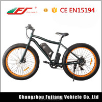 48v Samsung lithium battery fat tire beach cruiser electric bike 500w/1000w