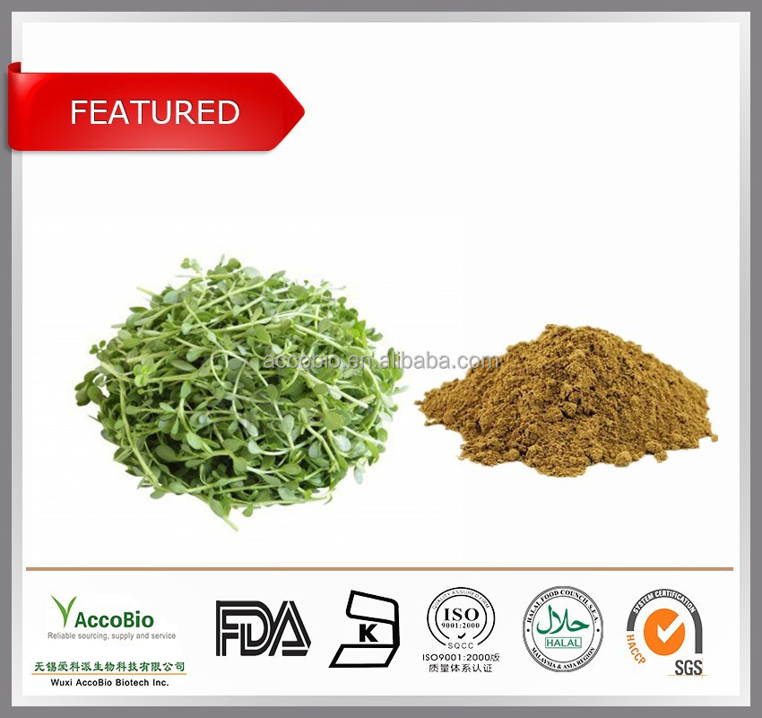 Top quality natural Bacopa monnieri extract 50% Bacopasides