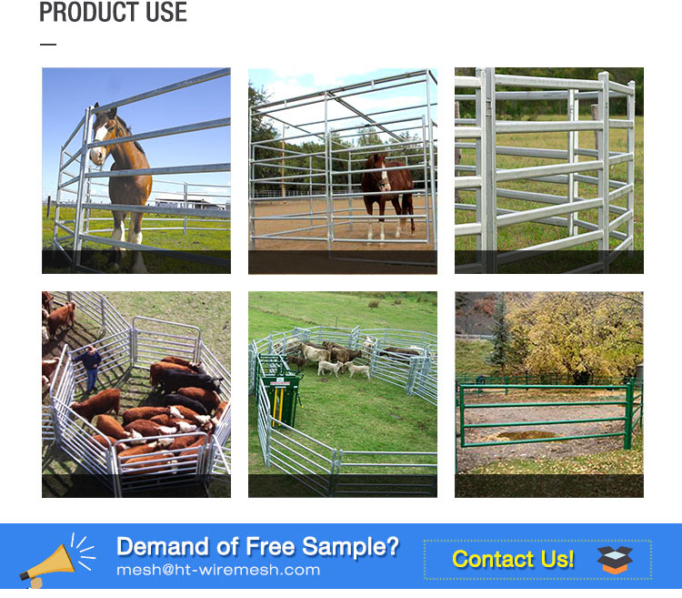 Factory direct cheap cattle panels for sale / Livestock panels / Used corral panels