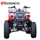 4 wheeler atv t-rex motorcycle taotao atv parts suzuki atv