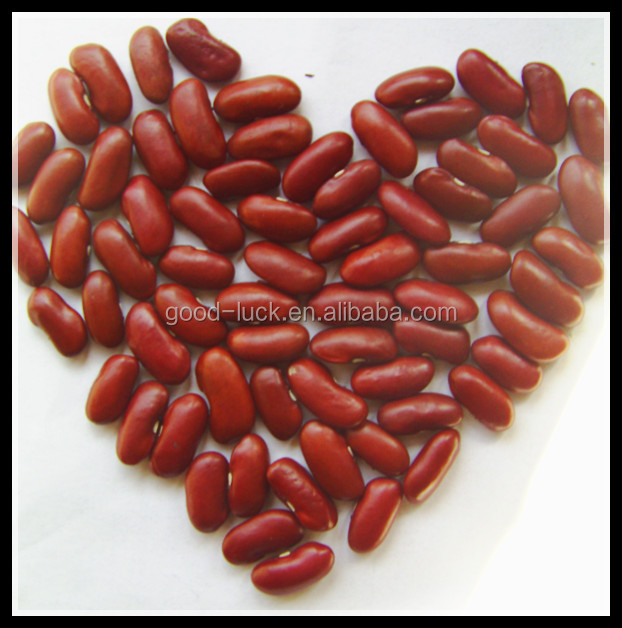 Dried Dark Red Kidney Beans Alubia