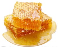 Chinese Pure Natural Best Honey in the world