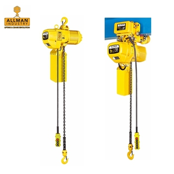 ALLMAN competitive electric hoist price 20' lift single or three phase with pendant control