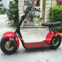 Double seat Citycoco Scrooser with LED light electric motorcycle 1000w factory new fasion electric scooter self balance scooter