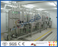 Mini Milk Processing Equipment