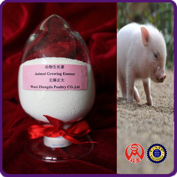 Animal Growing Essence fatteners for pigs
