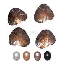 bulk oyster with pearl for cheap Freshwater Cultured Love Wish Pearl Oyster Rice more colors for choice 7.5-8mm 1206829