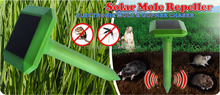 GH-316D beautiful shape vibration mole cather used in lawn