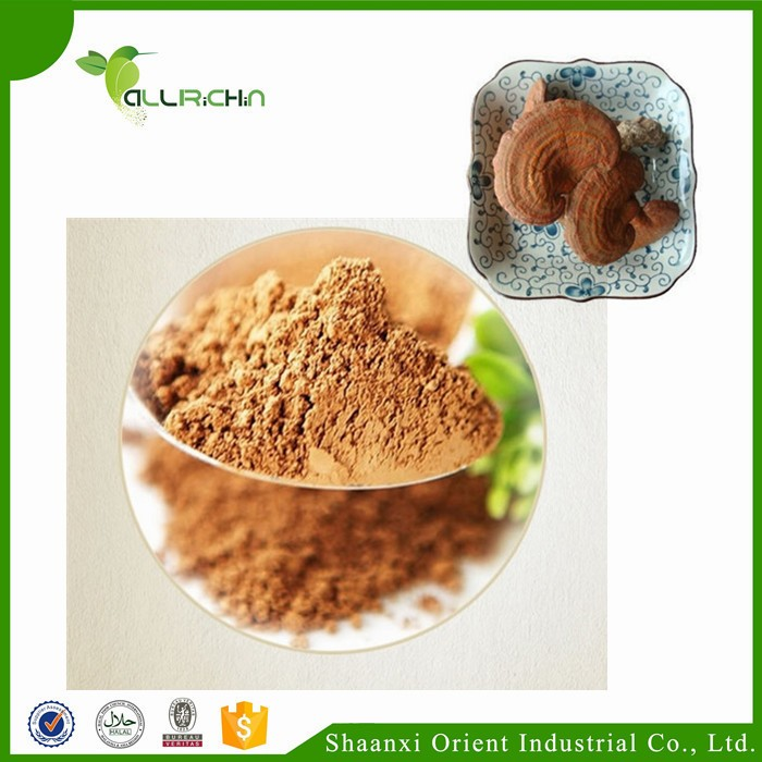 Traditional Chinese Medicine Pure Reishi Mushroom Extract Powder