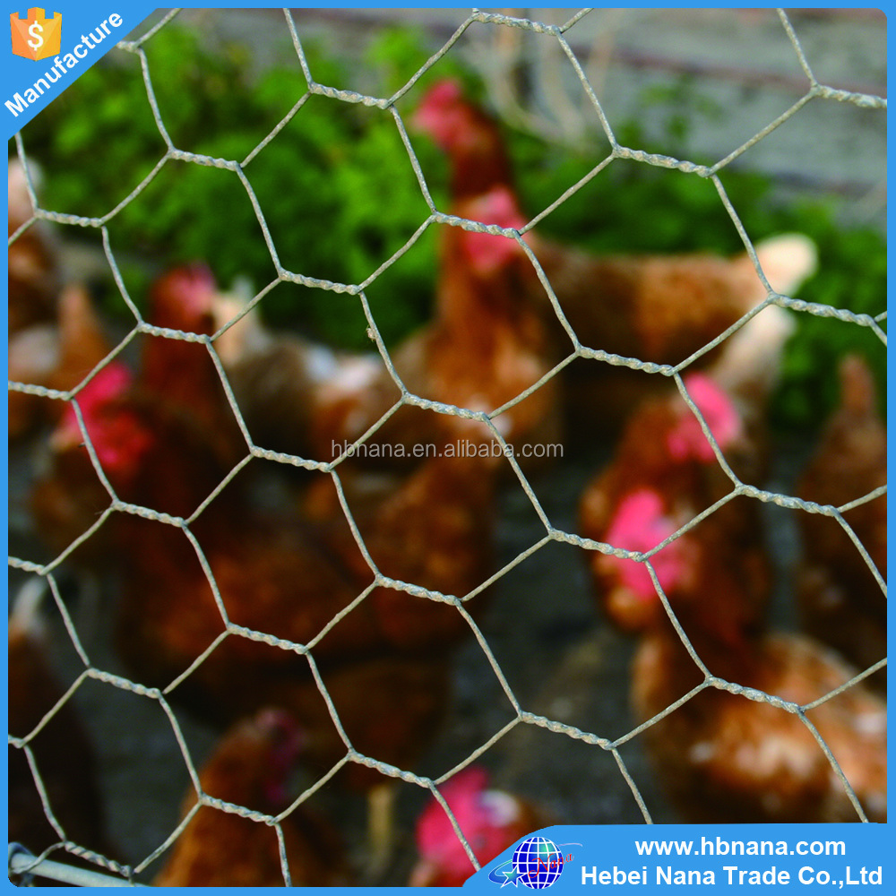 Multifunctional cheap solid hexagonal square chicken wire mesh