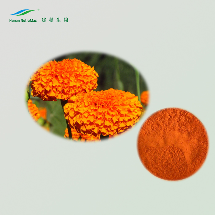 Herbal Extract Marigold Flower Extract/Marigold Extract/Marigold Oil