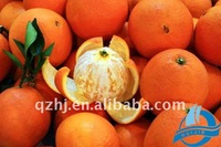 Fresh Chinese Navel Orange