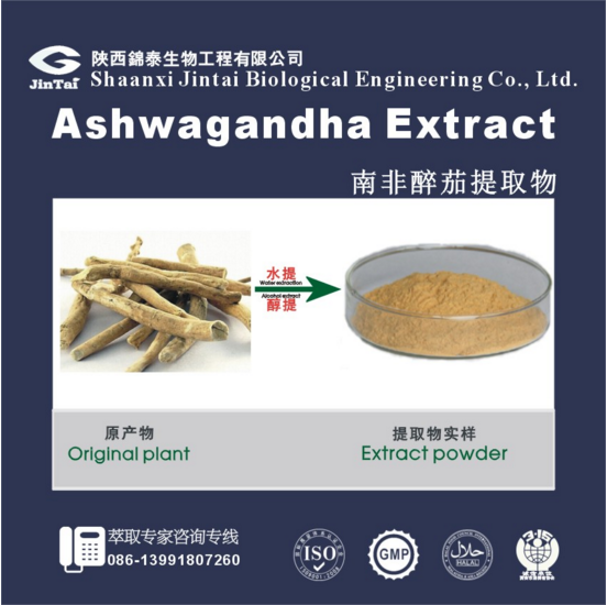 anti allergy Indian ginseng extract/ashwagandha extract powder