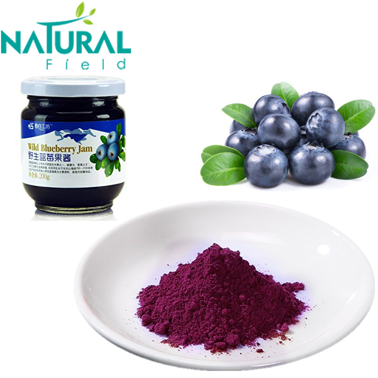 Wild Blueberry Powder Blueberry Juice Anthocyanidins 25%