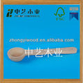 compact wooden condiment spoon