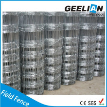 alibaba china 8*8 temporary cheap sheet metal galvanized used horse chain link wire mesh fence panels for dog run hot sale