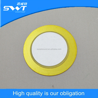 15mm 20mm 27mm 35mm Piezo ceramic plate external drive piezoelectric ceramic element supplier