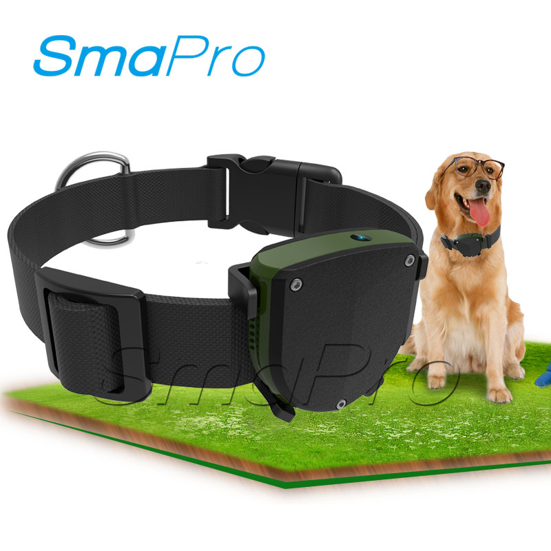 Real-time IP67 waterproof mini personal pet dog smart gps tracker
