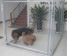 alibaba China supplier chain link dog kennel lowes for home & garden
